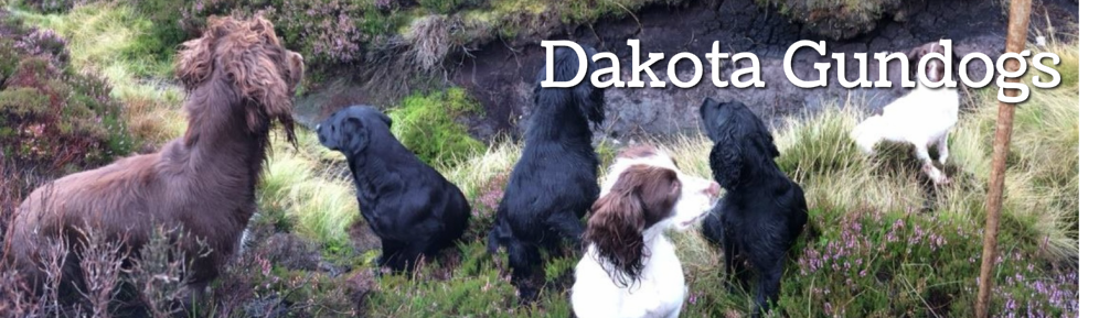 Dakota Gundogs